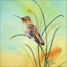 Sitting Hummer by Susan Libby Ceramic Accent & Decor Tile - SLA032AT