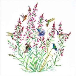 Libby Hummingbirds Floral Ceramic Accent & Decor Tile - SLA047AT
