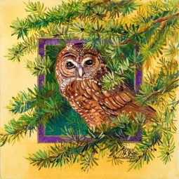 Spotted Owl by Susan Libby Accent & Decor Tile SLA085AT