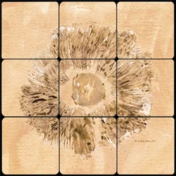 Gills I by Sara Mullen Tumbled Marble Tile Mural - SM076