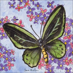 Butterfly Gathering V by Sara Mullen Ceramic Accent & Decor Tile - SM127AT