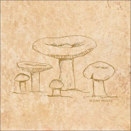 Mushroom Pattern 3 by Sara Mullen Ceramic Accent & Decor Tile - SM140AT