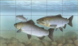 Knepp Salmon Fish Ceramic Tile Mural - TKA006