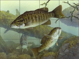 Smallmouth Bass by Tim Knepp Ceramic Tile Mural - TKA010