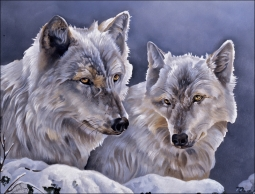 Wolves by Verdayle Forget Ceramic Accent & Decor Tile - VFA028AT