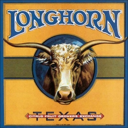 Longhorn by DP Art Ceramic Accent & Decor Tile - VLA103